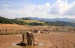Sistema Cantareira: Consultor ambiental revela impactos no ecossistema