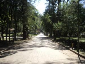 Parque do Carmo comemora seus 38 anos neste fim de semana