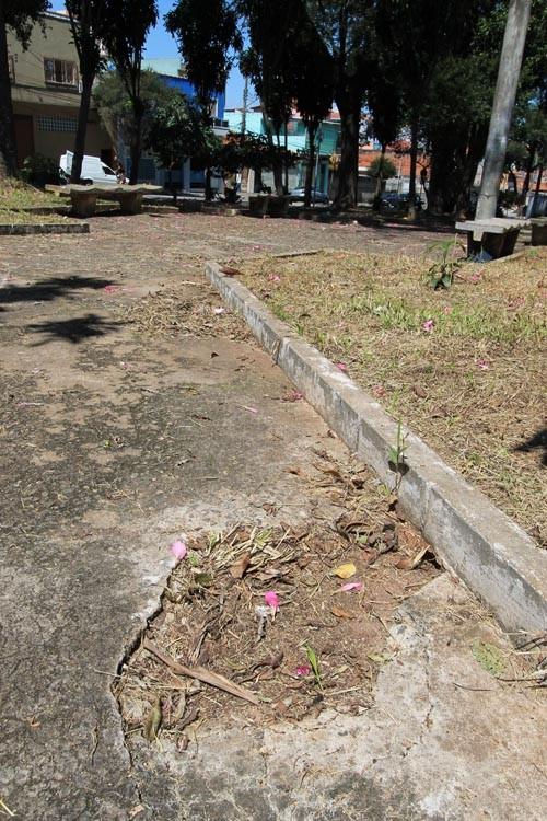 Praça Antonio Marques Novo precisa de poda de mato e limpeza urgente