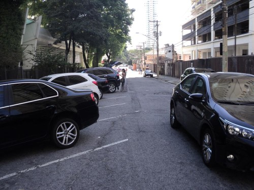 Mães de alunos de colégio da Rua Padre Estevão Pernet pediram poda de árvores na Rua Airi