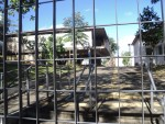 BIBLIOTECA DE ITAQUERA: 'Estorvo' continua para 2017