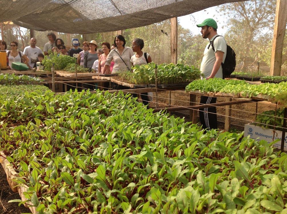 LAZER E CONHECIMENTO – Itaquera tem ações ambientais