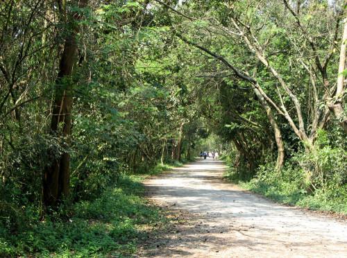 A trilha do parque fica vazia em determinados horários e precisa de mais segurança