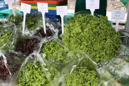 Alface da Orgânicos Vida também é encontrada nas feiras do Ceret e da Mooca