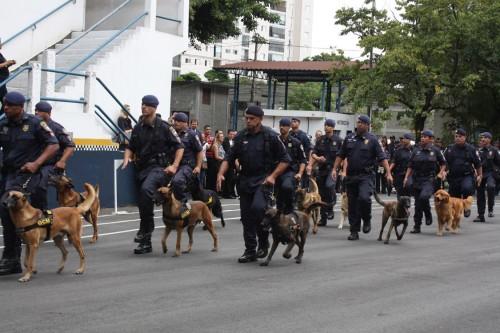 Os cães da GCM também participaram do desfile e da cerimônia no Belenzinho
