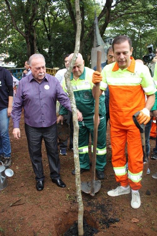 Doria, Paiva e Criscuolo durante plantio de Pau Brasil