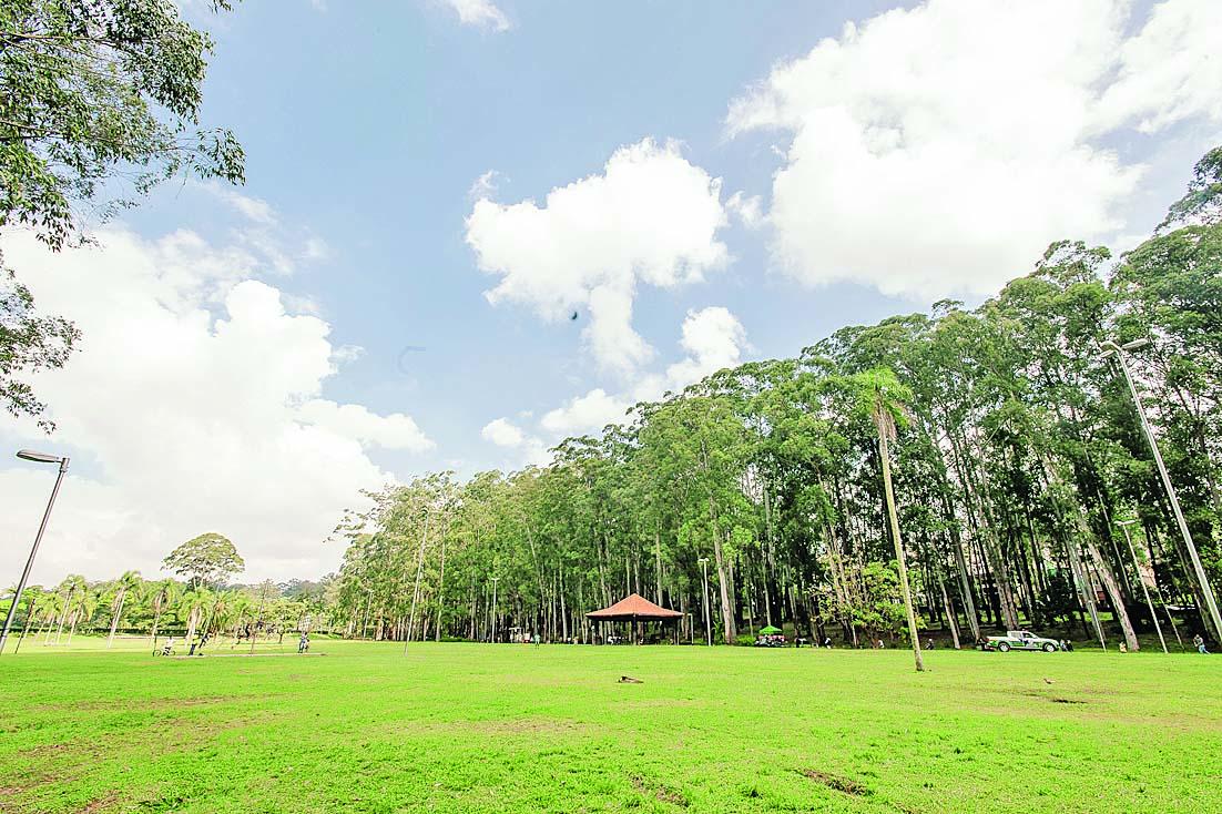 Parque do Carmo poderá ter ajuda da iniciativa privada